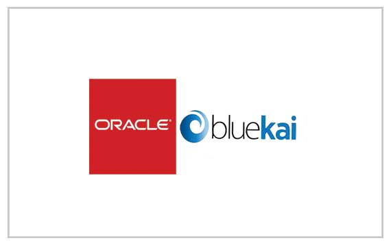 Oracle Bluekai