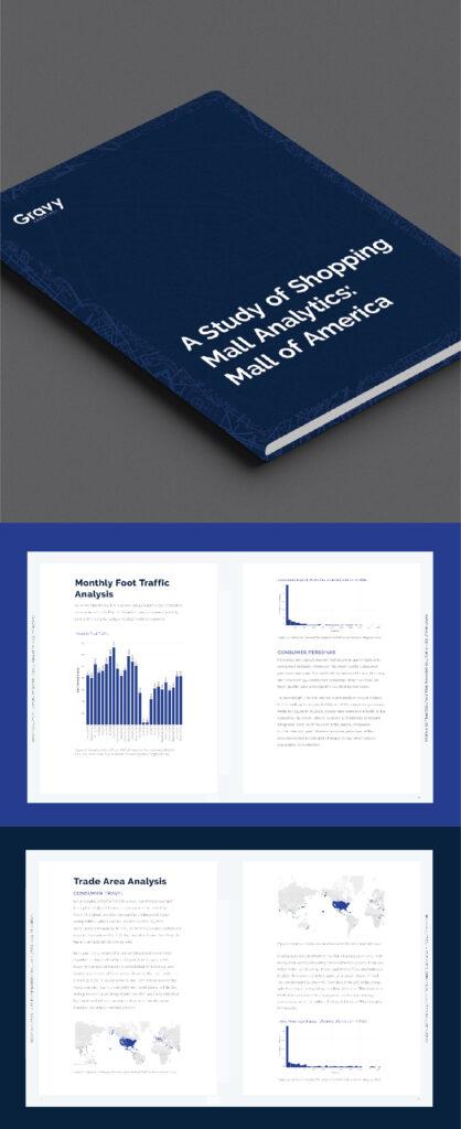 A Study of Shopping Mall Analytics:  Mall of America eBook