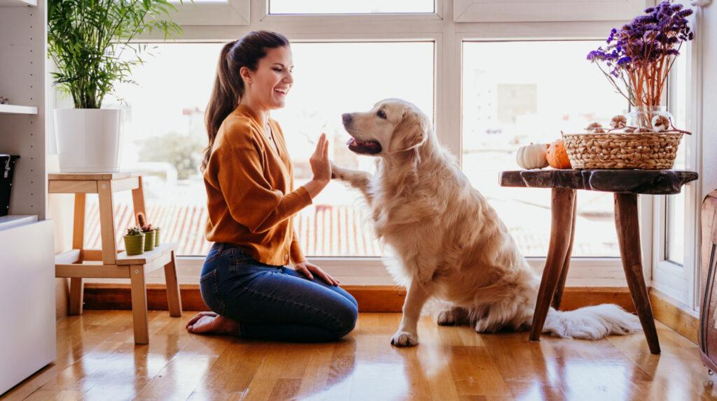 Consumer Behavior of Pet Lovers